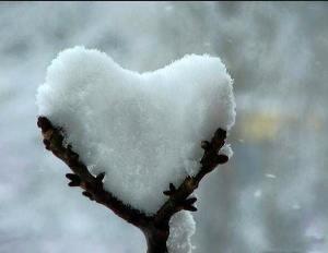 Twig Snow Heart