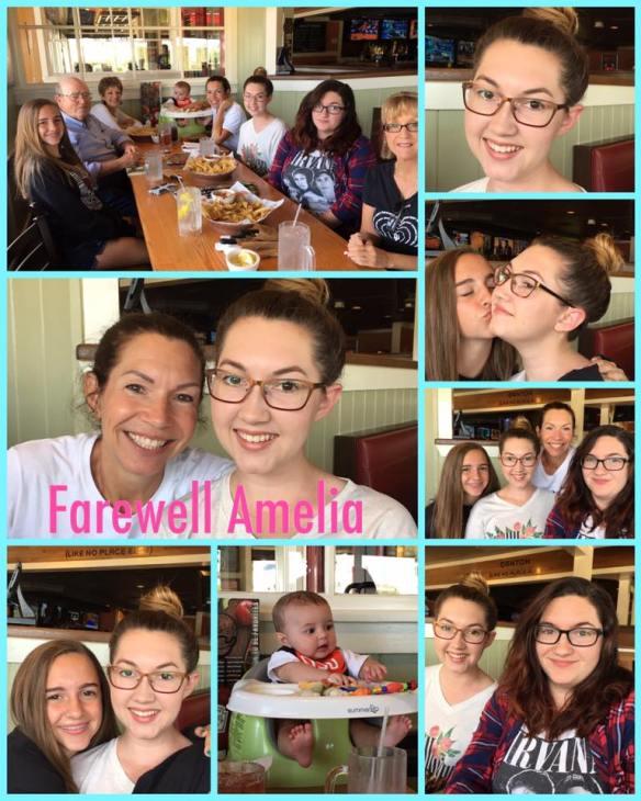 Farewell To Amelia 2017