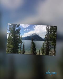 Tetons 2016 - Mountain and Trees